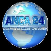 Agencia de Noticias Canal Azul 24