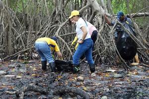 venezuela-manglares-300x200