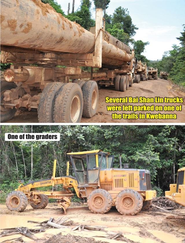 deforestacion-esequibo-4